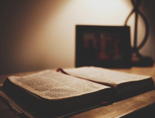 Serie Reglas de Interpretación de la Biblia